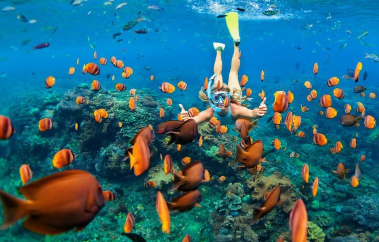 tourist scubadiving with fish